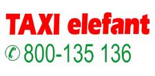 taxi elefant
